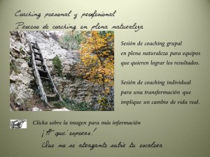 Outdoor_coaching_ejecutivo